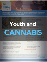 Youth and Cannabis